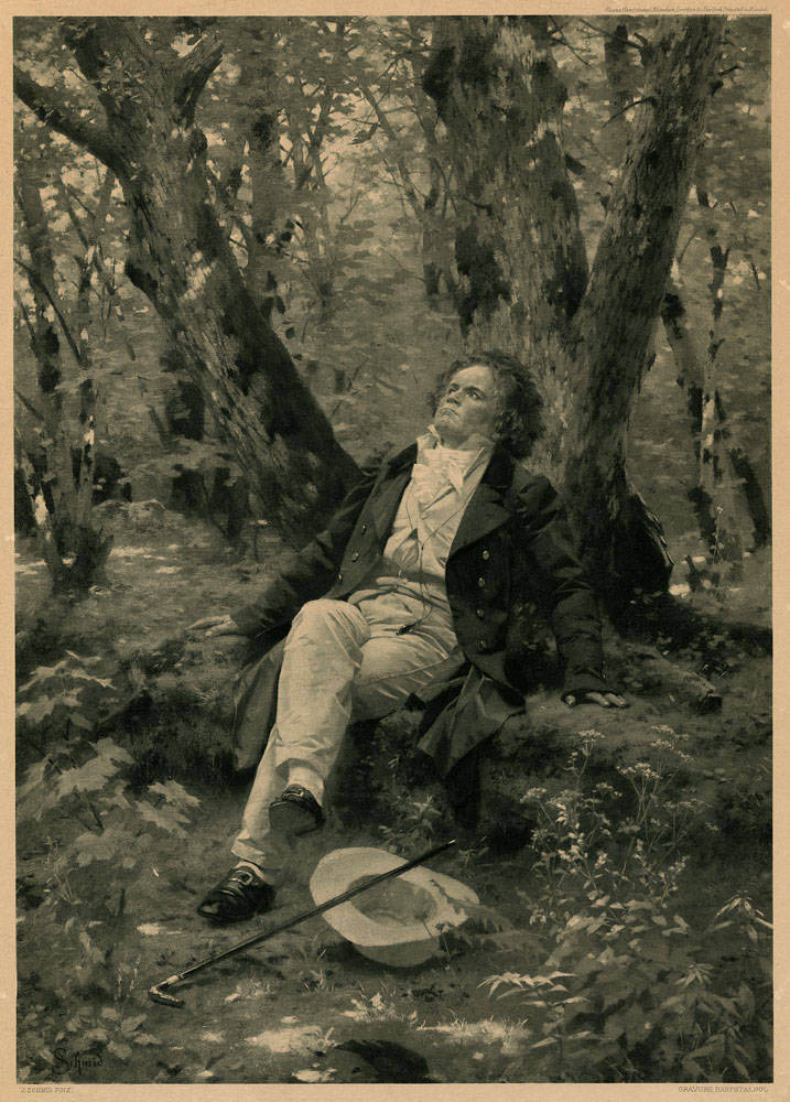 Beethoven is relaxing in a forest, looking up at the sky.