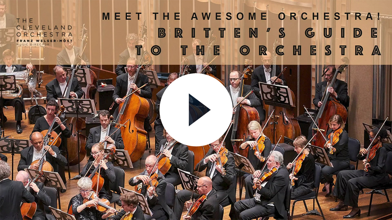 Guide to the Orchestra (Grades 3-5)